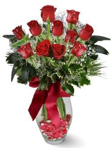9 adet gül  Gaziantep güvenli kaliteli hızlı çiçek  kirmizi gül