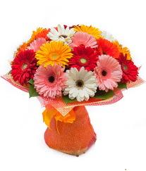 Renkli gerbera buketi  Gaziantep çiçek satışı