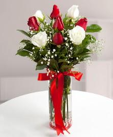 5 kırmızı 4 beyaz gül vazoda  Gaziantep çiçek yolla