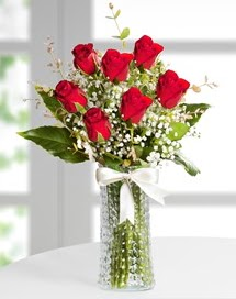 Cam vazoda 7 adet kırmızı gül  Gaziantep hediye sevgilime hediye çiçek