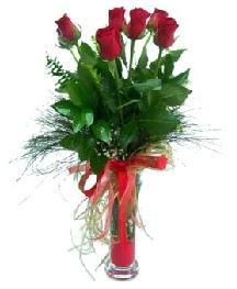 vazo içerisinde 5 kırmızı gül  Gaziantep internetten çiçek satışı