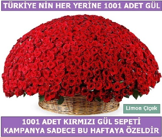 1001 Adet kırmızı gül Bu haftaya özel  Gaziantep online çiçek gönderme sipariş