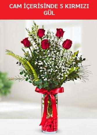 Cam içerisinde 5 adet kırmızı gül  Gaziantep kaliteli taze ve ucuz çiçekler