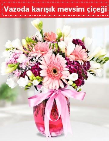 Vazoda karışık mevsim çiçeği  Gaziantep hediye sevgilime hediye çiçek