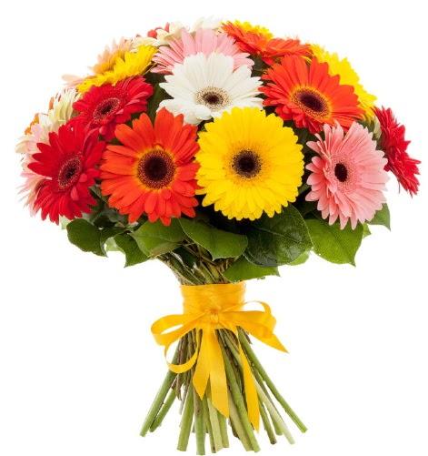 Gerbera demeti buketi  Gaziantep anneler günü çiçek yolla
