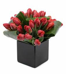 Gaziantep hediye çiçek yolla  mika yada cam Vazo içerisinde kalite lale