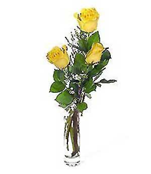 Gaziantep online çiçekçi , çiçek siparişi  3 adet kalite cam yada mika vazo gül