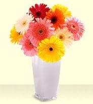 Gaziantep çiçekçi telefonları  gerberalardan mika yada cam vazo tanzim