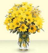 Gaziantep online çiçekçi , çiçek siparişi  kirzantenlerden vazo tanzim