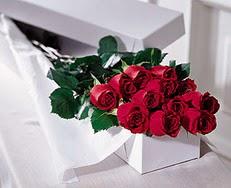 Gaziantep anneler günü çiçek yolla  özel kutuda 12 adet gül