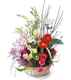 Gaziantep İnternetten çiçek siparişi  Mevsim çiçekleri sepeti