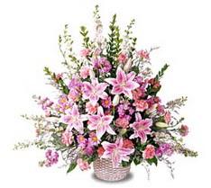 Gaziantep kaliteli taze ve ucuz çiçekler  Tanzim mevsim çiçeklerinden çiçek modeli