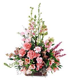 Gaziantep çiçek online çiçek siparişi  mevsim çiçeklerinden özel