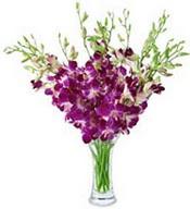 Gaziantep çiçek yolla  cam yada mika vazoda kalite glayörler