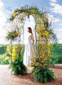 Gaziantep güvenli kaliteli hızlı çiçek  güller ve mevsim çiçegi