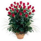 Gaziantep çiçek gönderme  10 adet kirmizi gül cam yada mika vazo