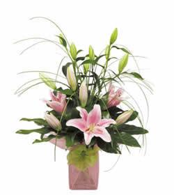 Gaziantep çiçek mağazası , çiçekçi adresleri  lilyumlardan mika yada cam vazo tanzim
