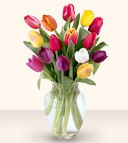 Gaziantep yurtiçi ve yurtdışı çiçek siparişi  13 adet cam yada mika vazoda laleler