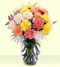 Gaziantep İnternetten çiçek siparişi  cam yada mika vazoda renkli karanfiller