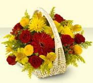 Gaziantep çiçekçi telefonları  sepette mevsim çiçekleri