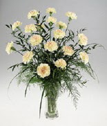 Gaziantep güvenli kaliteli hızlı çiçek  cam yada mika vazoda  krem karanfiller