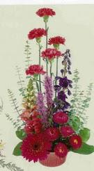 Gaziantep çiçek mağazası , çiçekçi adresleri  mevsim çiçeklerinden sepet