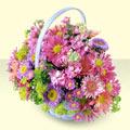 Gaziantep çiçekçiler  bir sepet dolusu kir çiçegi  Gaziantep cicek , cicekci