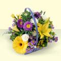 Gaziantep internetten çiçek siparişi  sepette kir çiçeklerinden  Gaziantep cicekciler , cicek siparisi