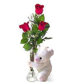 oyuncak ve 3 adet gül  Gaziantep kaliteli taze ve ucuz çiçekler