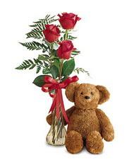 oyuncak ve güller tanzim   Gaziantep 14 şubat sevgililer günü çiçek