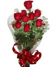 9 adet kaliteli kirmizi gül   Gaziantep internetten çiçek siparişi