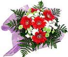 karisik gerbera ve kir çiçegi   Gaziantep 14 şubat sevgililer günü çiçek