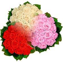 3 renkte gül seven sever   Gaziantep hediye sevgilime hediye çiçek