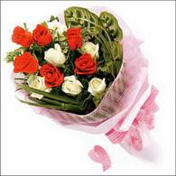 5 kirmizi 5 beyaz güllerden   Gaziantep İnternetten çiçek siparişi