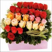 15 adet renkli gül ve cam   Gaziantep çiçek mağazası , çiçekçi adresleri