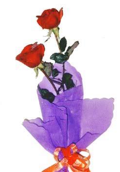 2  adet kirmizi gül buketi   Gaziantep hediye sevgilime hediye çiçek