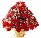 41 adet kirmizi gül sepette   Gaziantep hediye sevgilime hediye çiçek