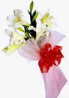 Gaziantep hediye sevgilime hediye çiçek  ince vazoda gerbera ve ayi