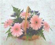 gerbera çiçeklerinde sepet   Gaziantep cicekciler , cicek siparisi