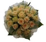 12 adet sari güllerden buket   Gaziantep çiçek gönderme