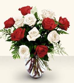 Gaziantep çiçek gönderme  6 adet kirmizi 6 adet beyaz gül cam içerisinde