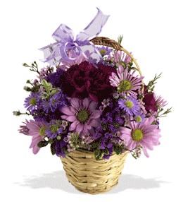 Gaziantep çiçek gönderme  sepet içerisinde krizantem çiçekleri