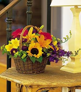 Gaziantep çiçek yolla  karisik sepet içinde mevsimsel çiçekler
