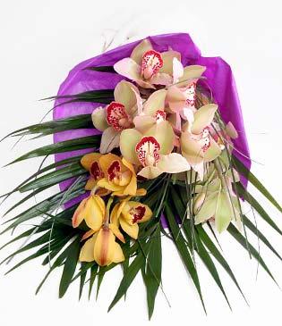 Gaziantep çiçek yolla  1 adet dal orkide buket halinde sunulmakta
