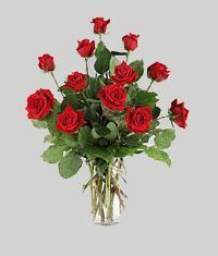Gaziantep çiçek yolla  11 adet kirmizi gül vazo halinde