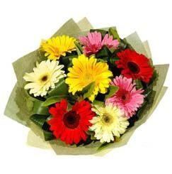 9 adet karisik gerbera demeti  Gaziantep çiçekçi mağazası