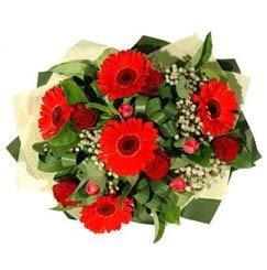 Gaziantep çiçek online çiçek siparişi   5 adet kirmizi gül 5 adet gerbera demeti