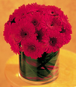 Gaziantep çiçek online çiçek siparişi  23 adet gerbera çiçegi sade ve sik cam içerisinde