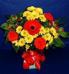 Gaziantep çiçek online çiçek siparişi  sade hos orta boy karisik demet çiçek