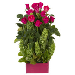 12 adet kirmizi gül aranjmani  Gaziantep çiçekçi mağazası